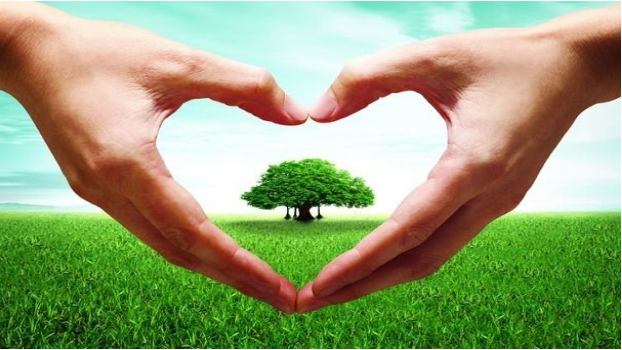 技术与环境治理服务